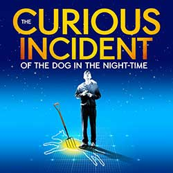The Curious Incident of the Dog in the Night Time Seattle | Paramount Theatre